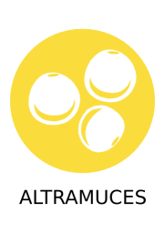 ALTRAMUCES